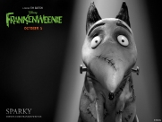 Frankenweenie_Exclusive_Character_Debuts_Meet_Victor_And_Sparky_1340122165